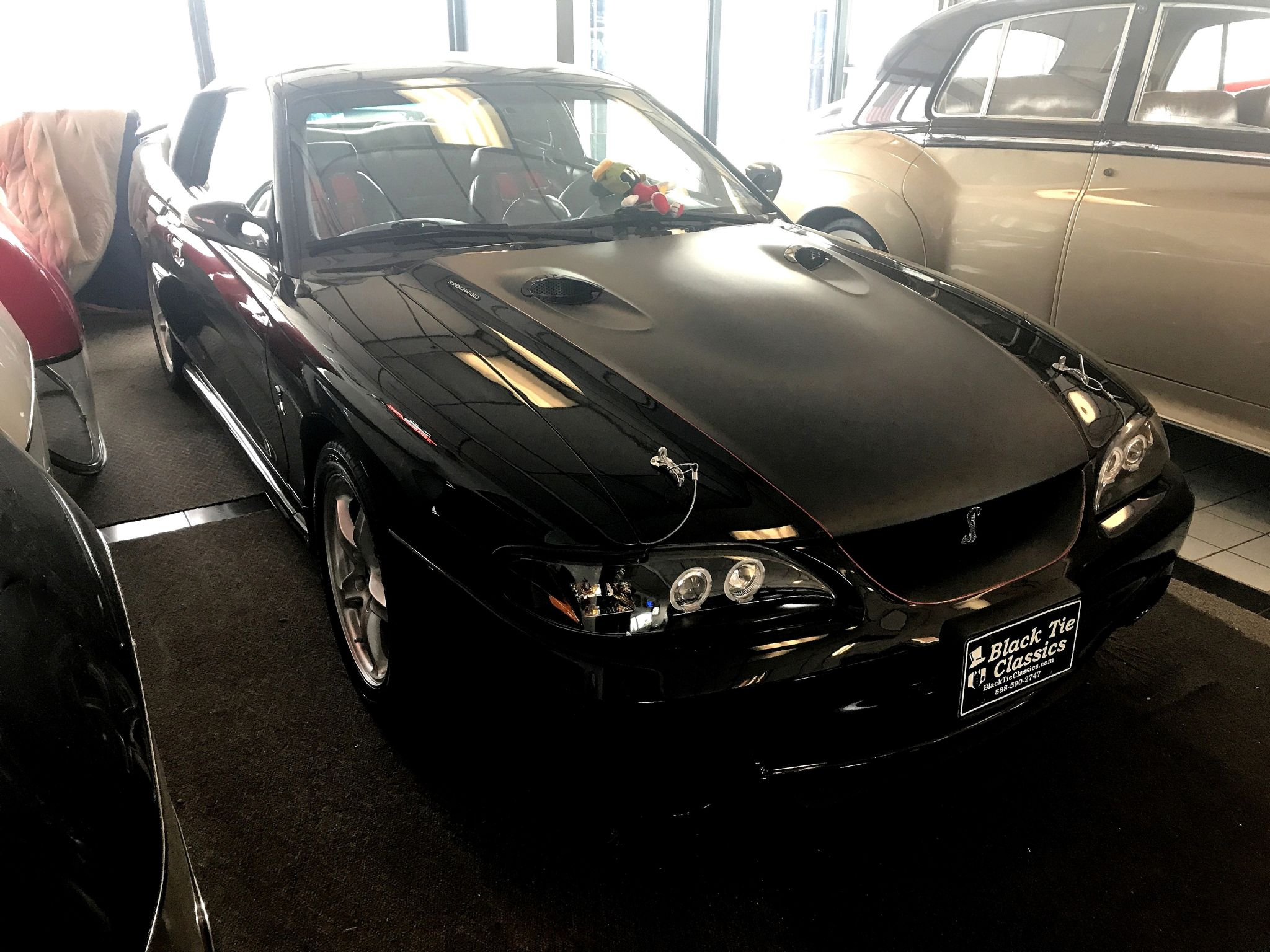 1998 ford mustang cobra for sale autabuy com