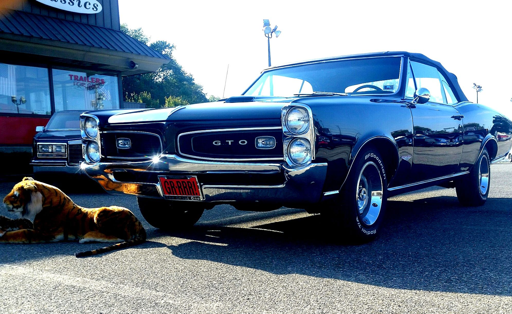 1966 PONTIAC GTO 5