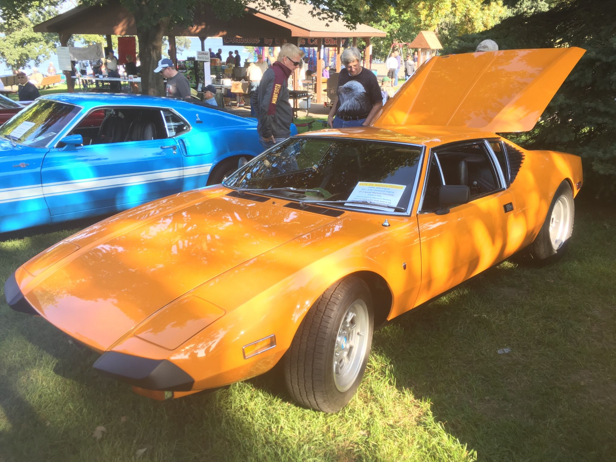 Ford Pantera For Sale >> 1973 Detomaso Pantera For Sale Autabuy Com