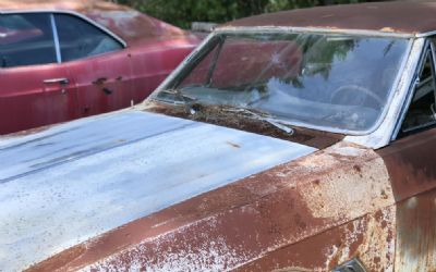 Buick Two 1967 Project Cars, One Firebird